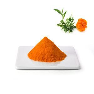 Marigold Flower Extract for Eyes